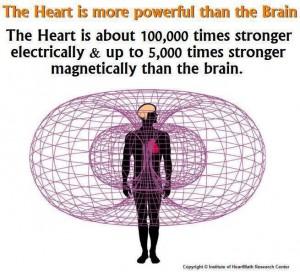 Hjertet og dets intelligens